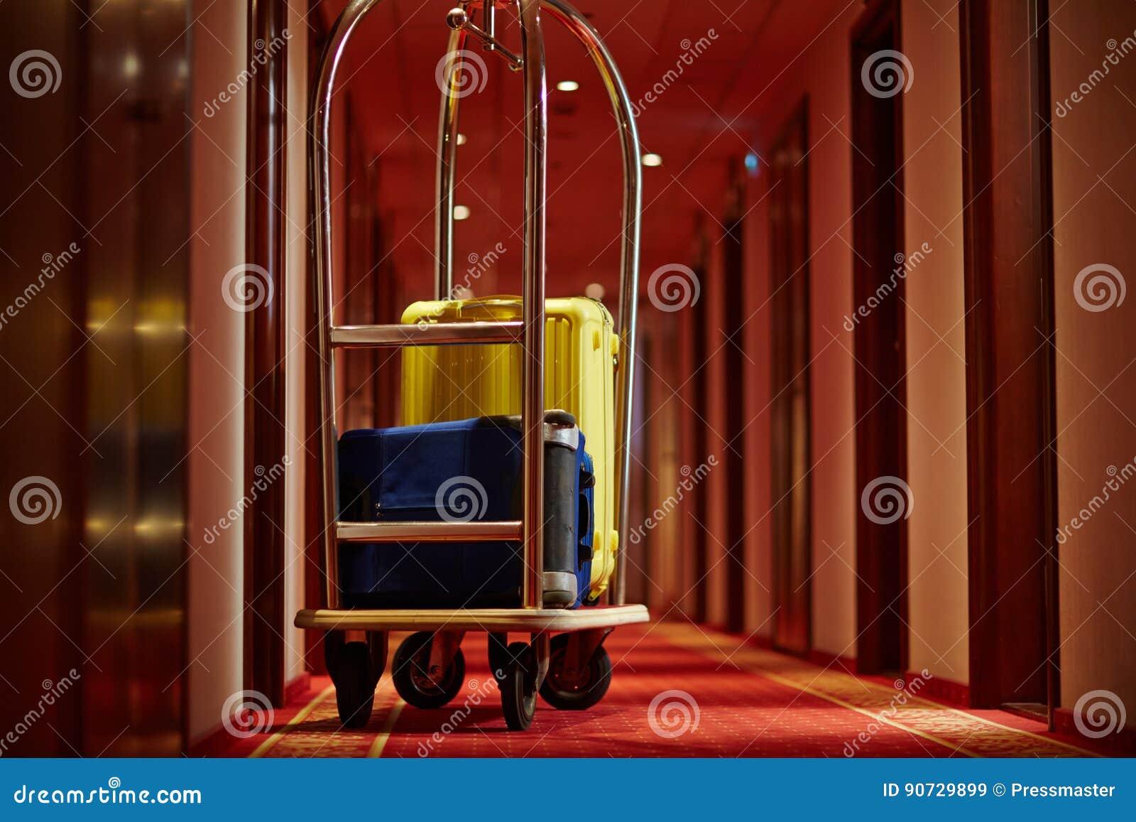 Bagaż podróżnicy