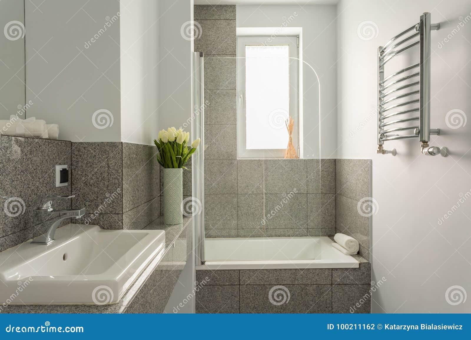 Bagno Grigio E Bianco Fotografia Stock Immagine Di Disegno