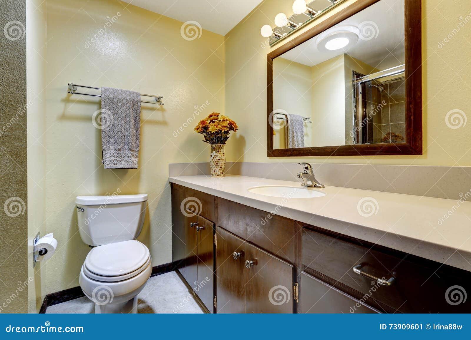 Colori Per Pareti Beige : Bagno nel colore marrone con le pareti beige immagine stock