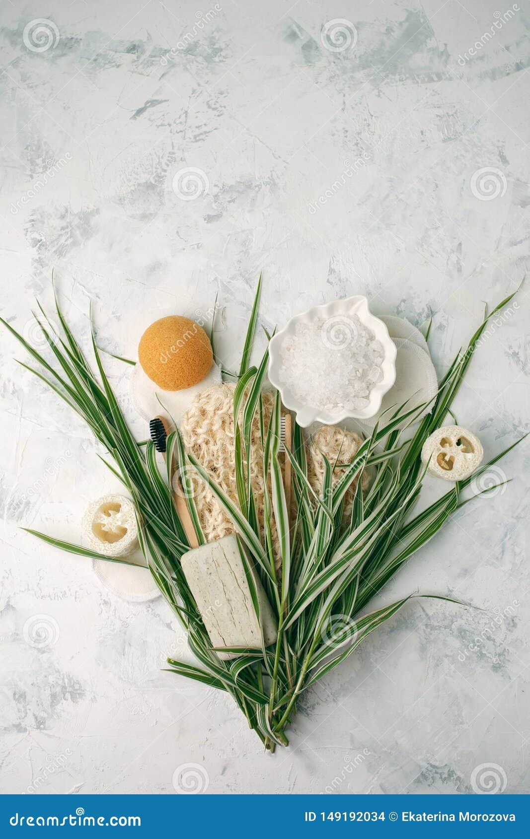 Bagno residuo zero e pulizia Insieme ecologico del bagno Spazzole, spazzolino da denti, sapone, sale marino e foglie verdi