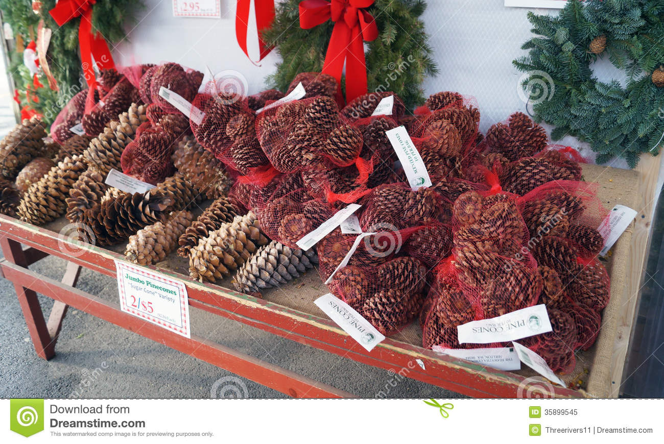 Pine Cones On Sale For Christmas Stock Image Image 35899545