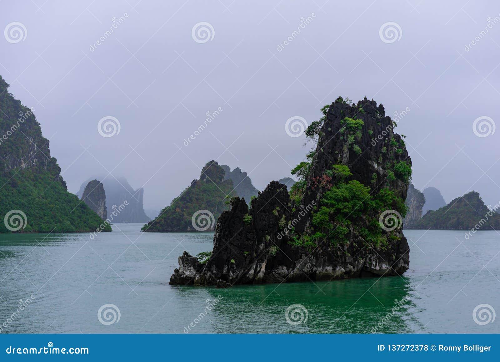 Bahía de Halong en nubes místicas
