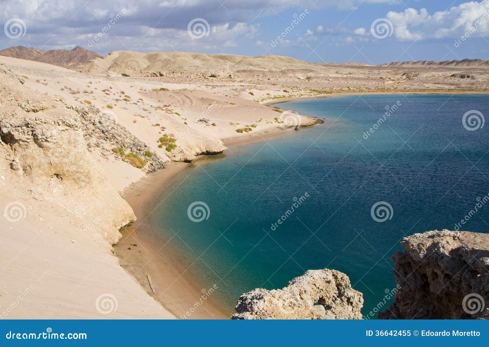 Bahía de la tortuga en Egipto