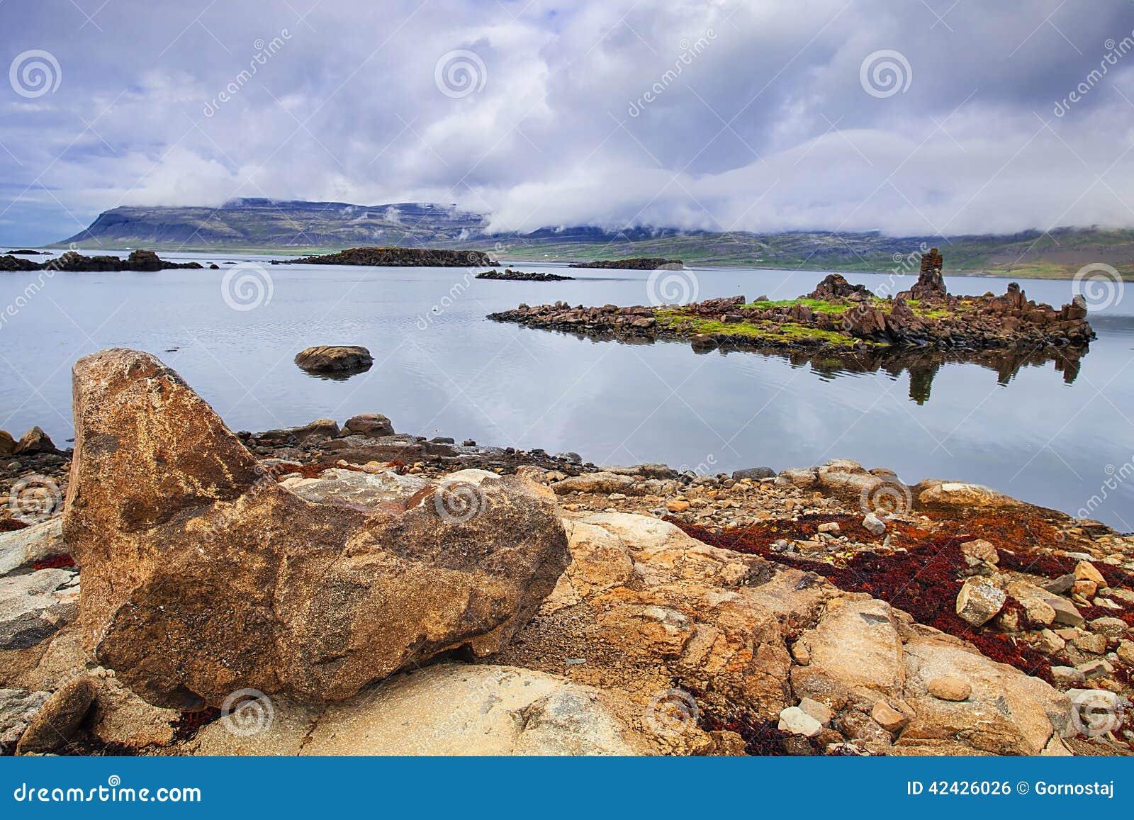Bahía del sello, de Westfjords, Islandia
