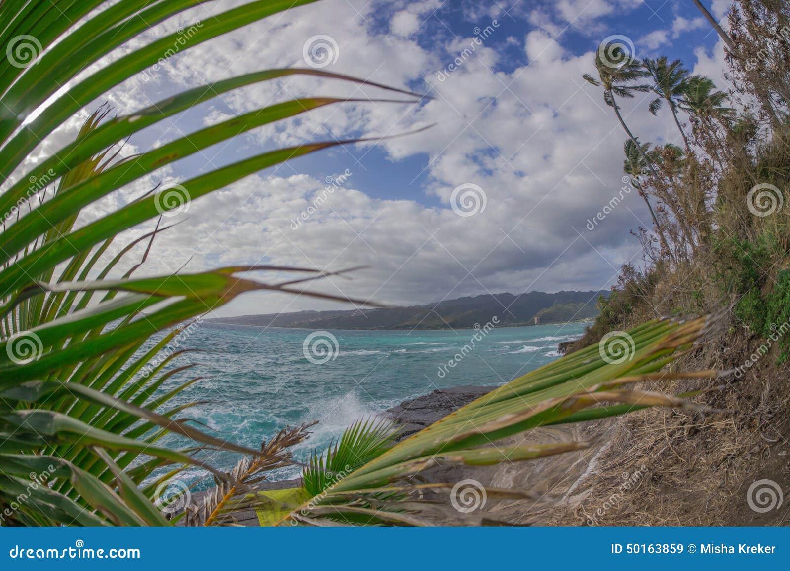 Bahía hawaiana tropical