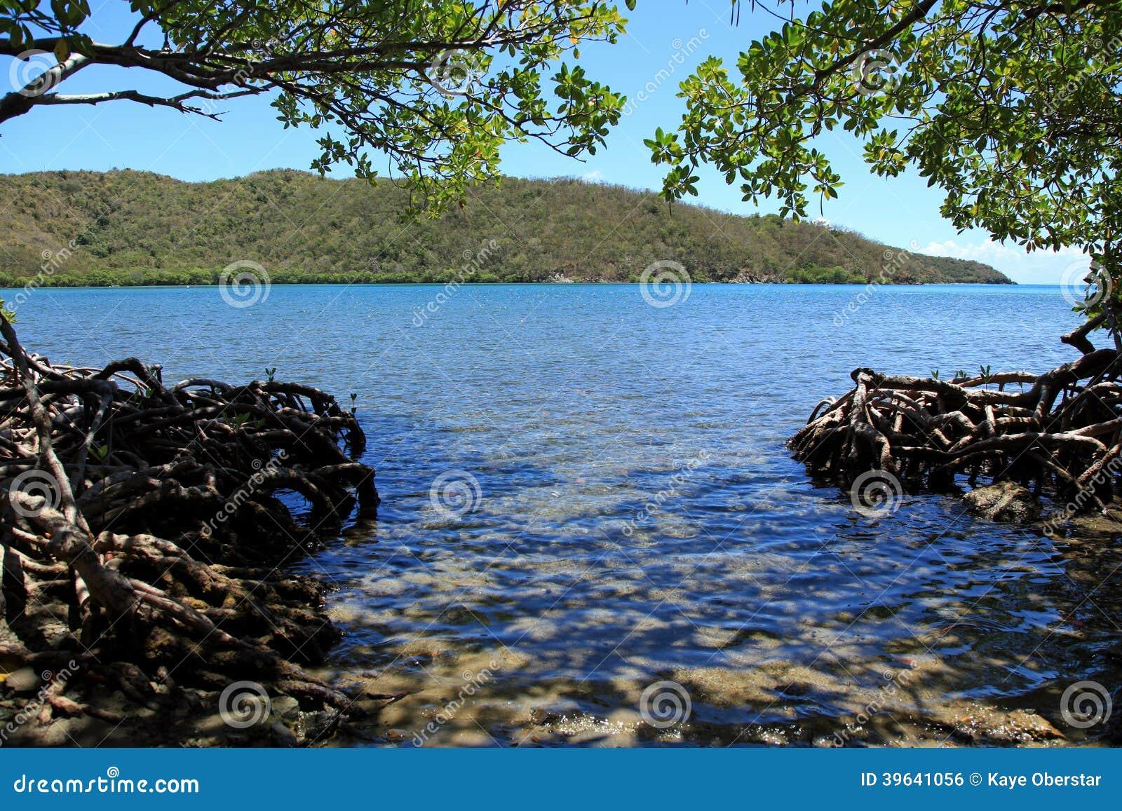Bahía redonda en St John