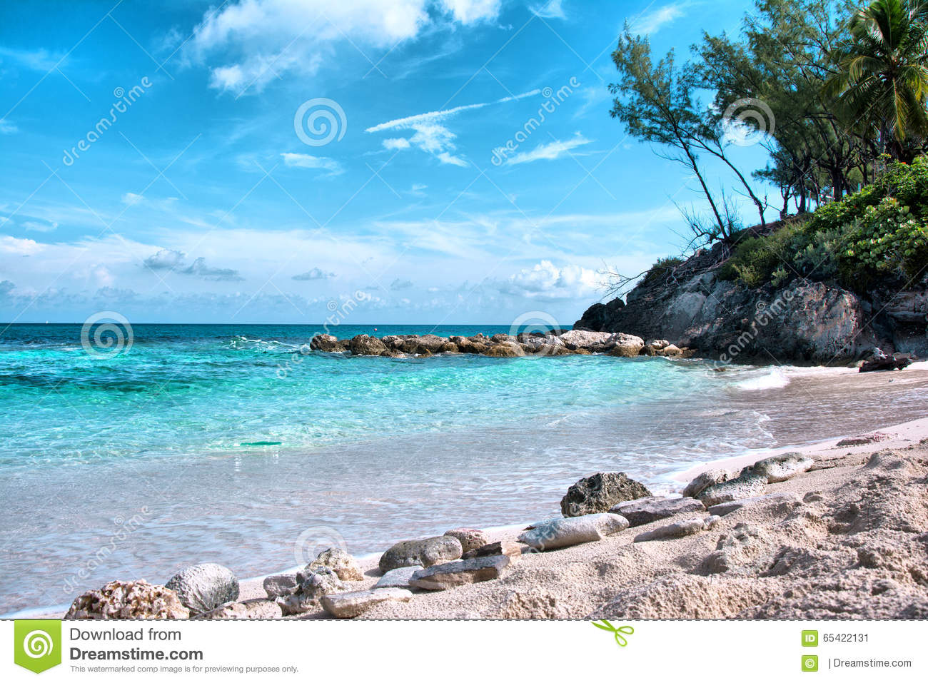 Bahamas Blue Lagoon Beach Stock Image Image Of Tree 65422131