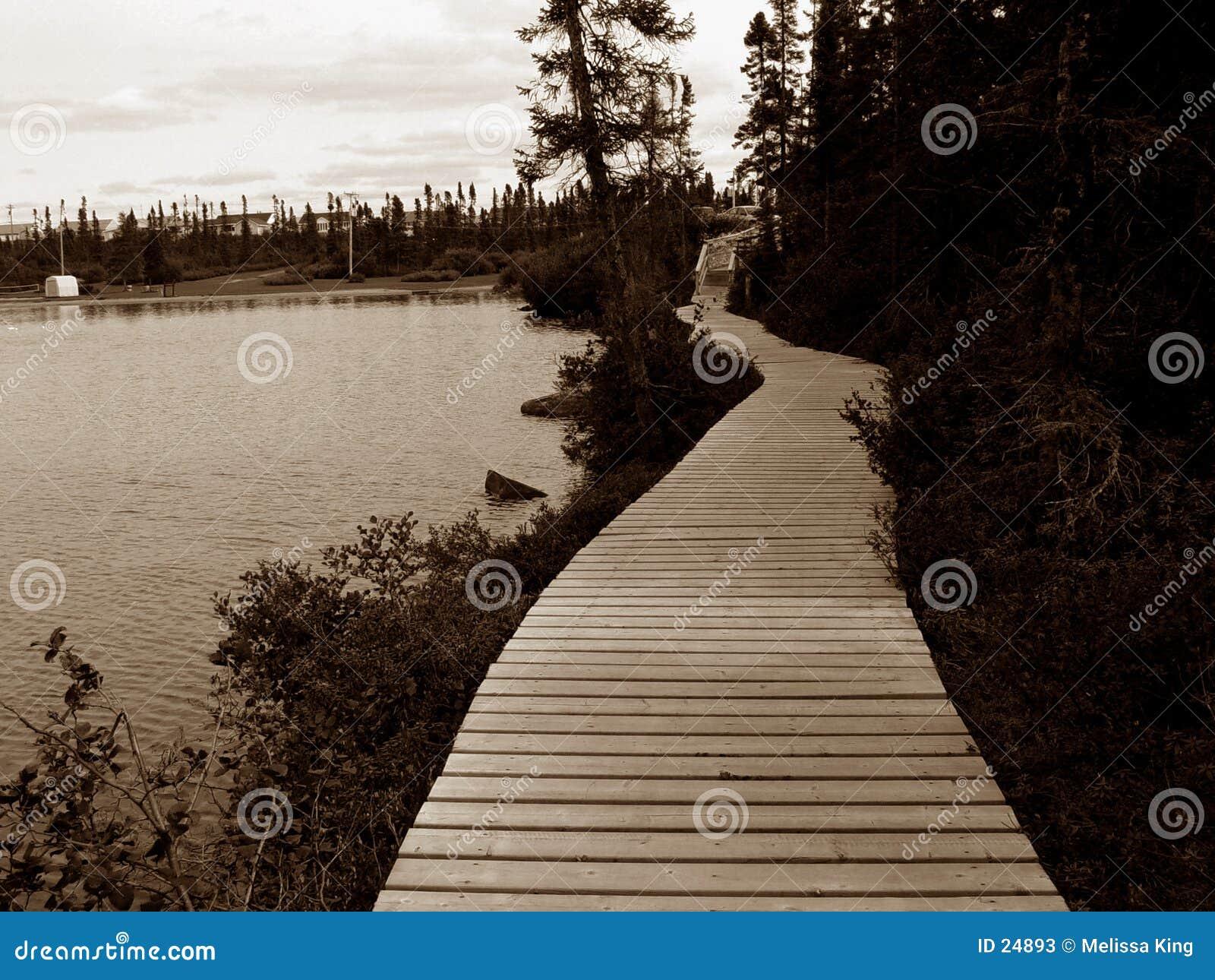 Bahn um Teich