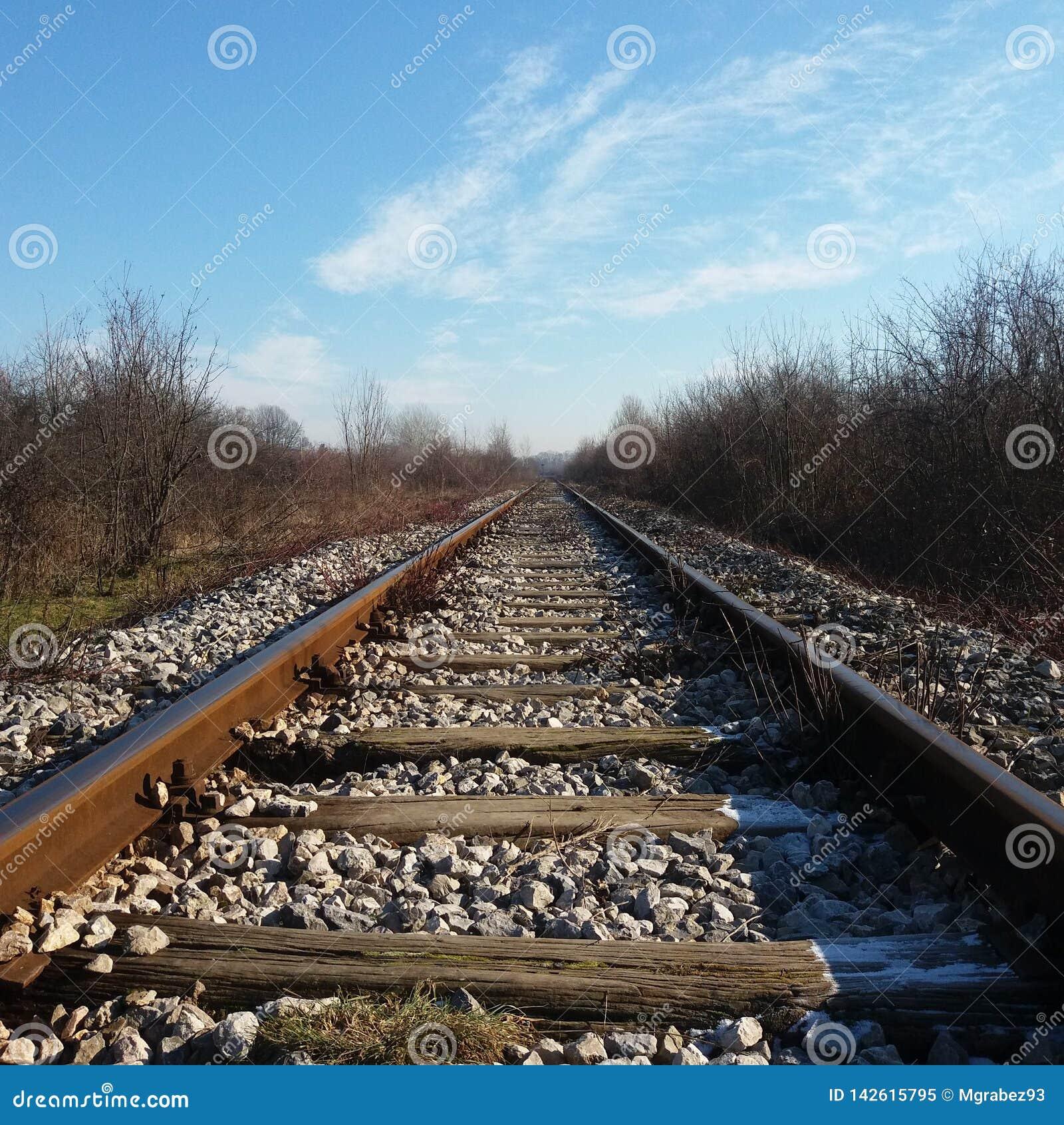 Bahnstrecken im Winter, Eis