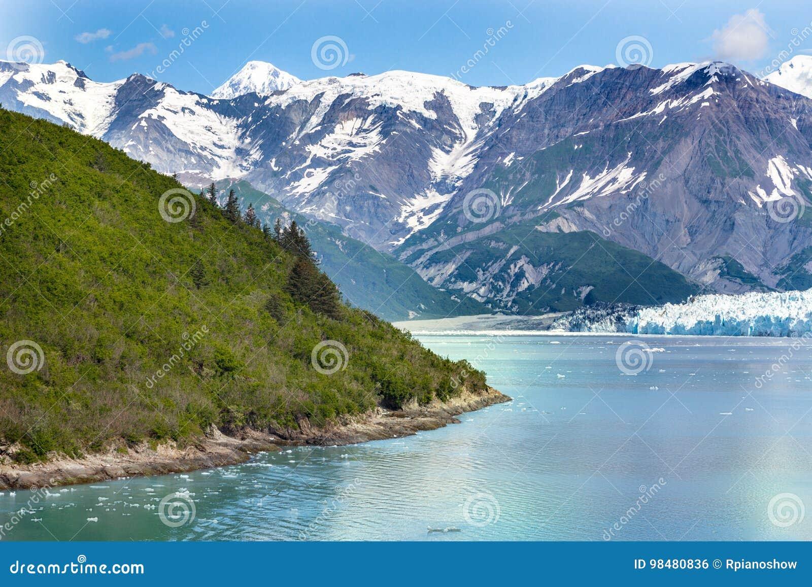 Baia di ghiacciaio Alaska