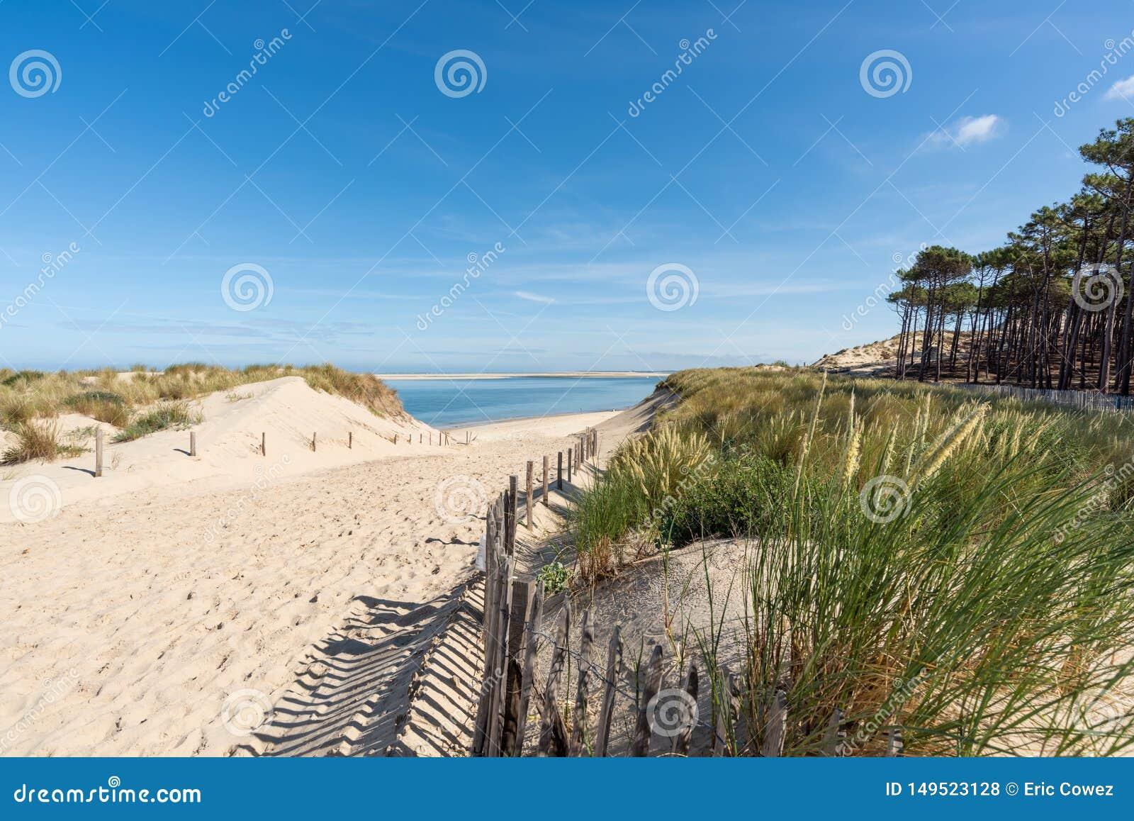 Baie d Arcachon, France : le petit gentil de plage devant la banque de sable d Arguin et pr?s de la dune de Pilat