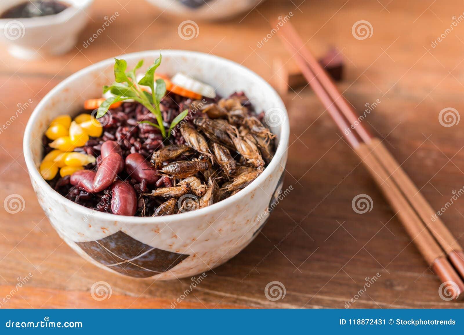 Baie d insecte et de riz