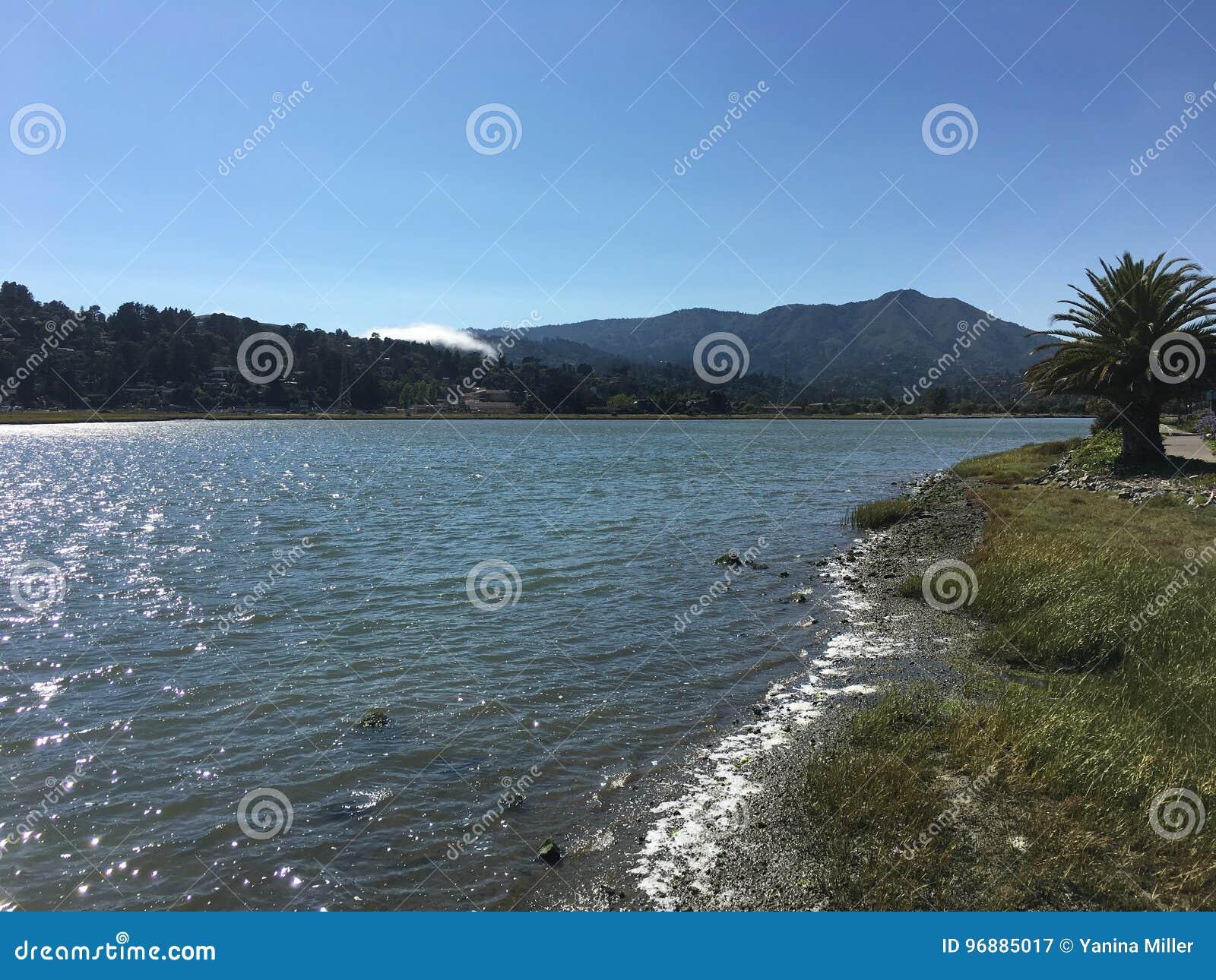 Baie, vagues, montagne, palmier, brouillard et ciel bleu