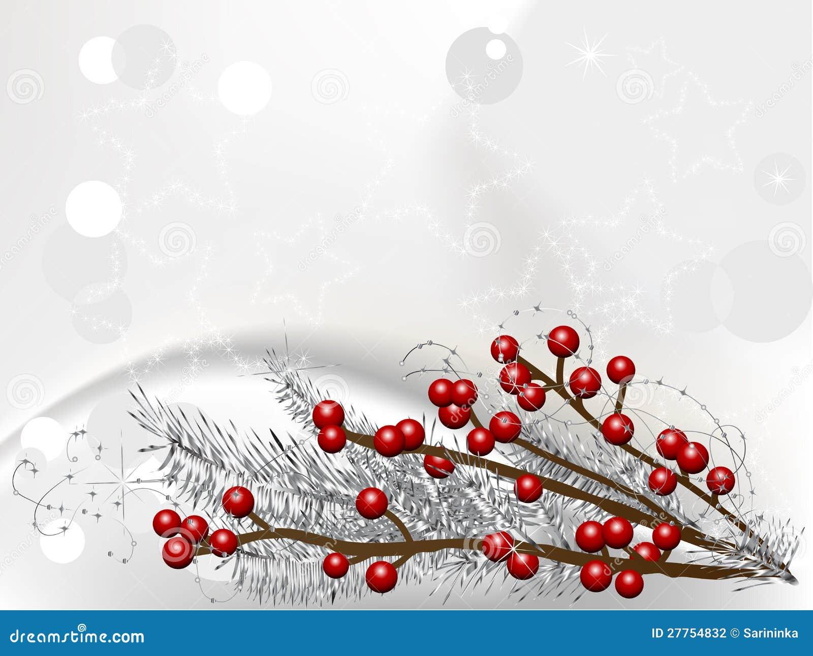 Baies de Noël