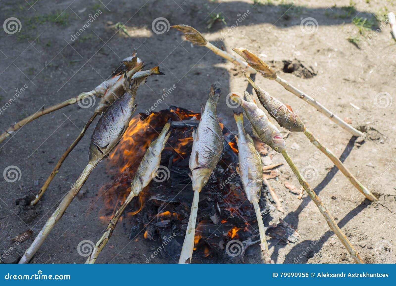 Baikal wordt omul geroosterd op de steenkolen