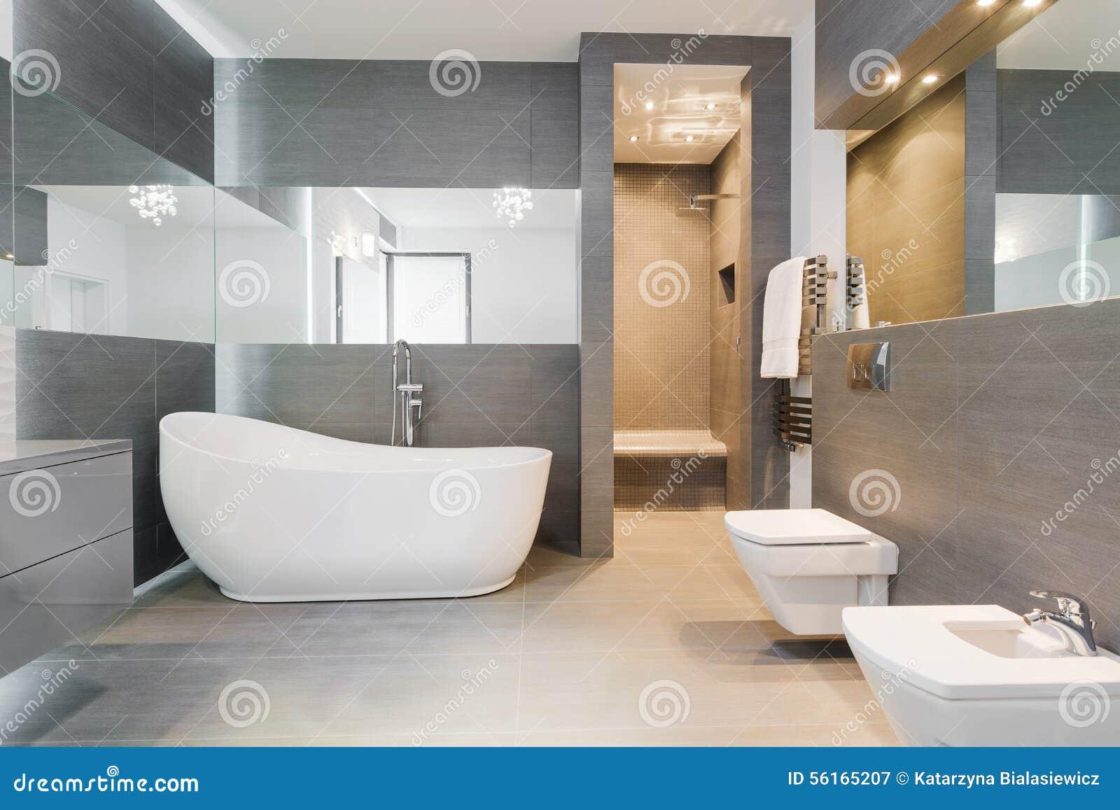 Bain Libre Dans La Salle De Bains Moderne Image Stock Image Du