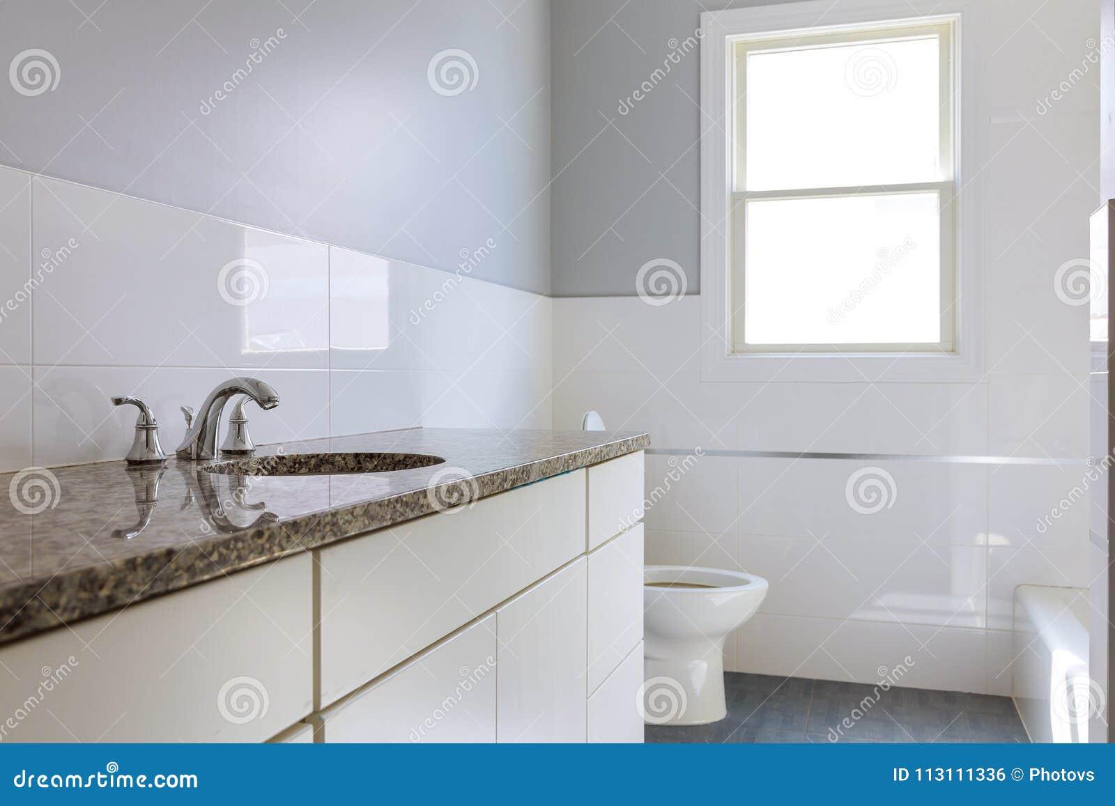 Bain principal dans le cabinetry en bois foncé de maison de nouvelle construction