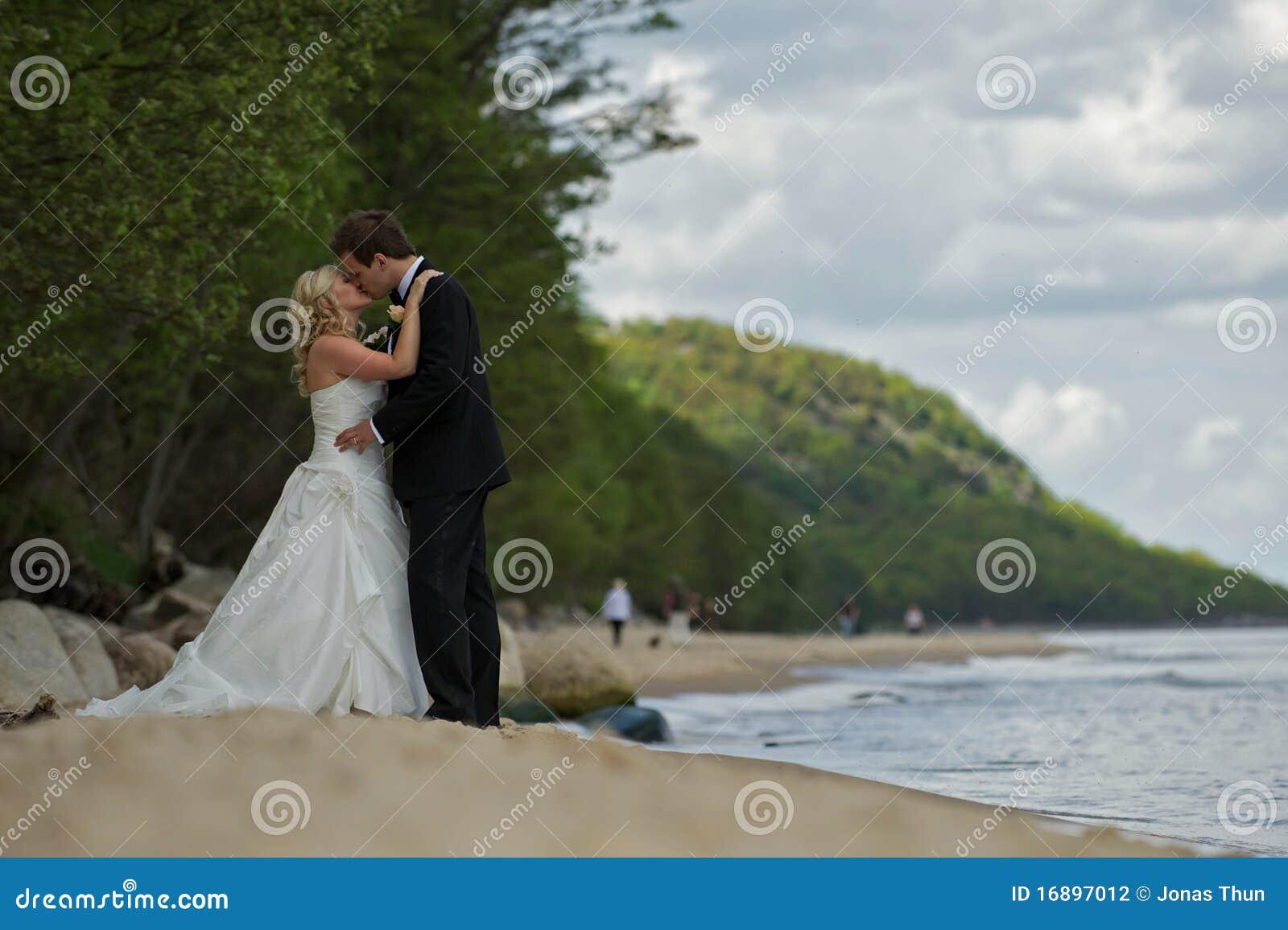 baisers des couples de mariage sur la plage photographie stock image 16897012. Black Bedroom Furniture Sets. Home Design Ideas