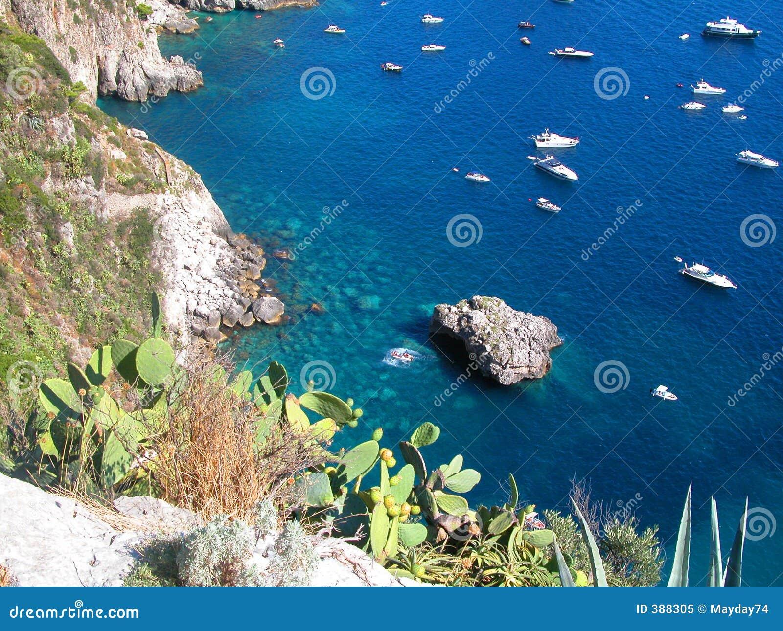 Baisse bleue Capri