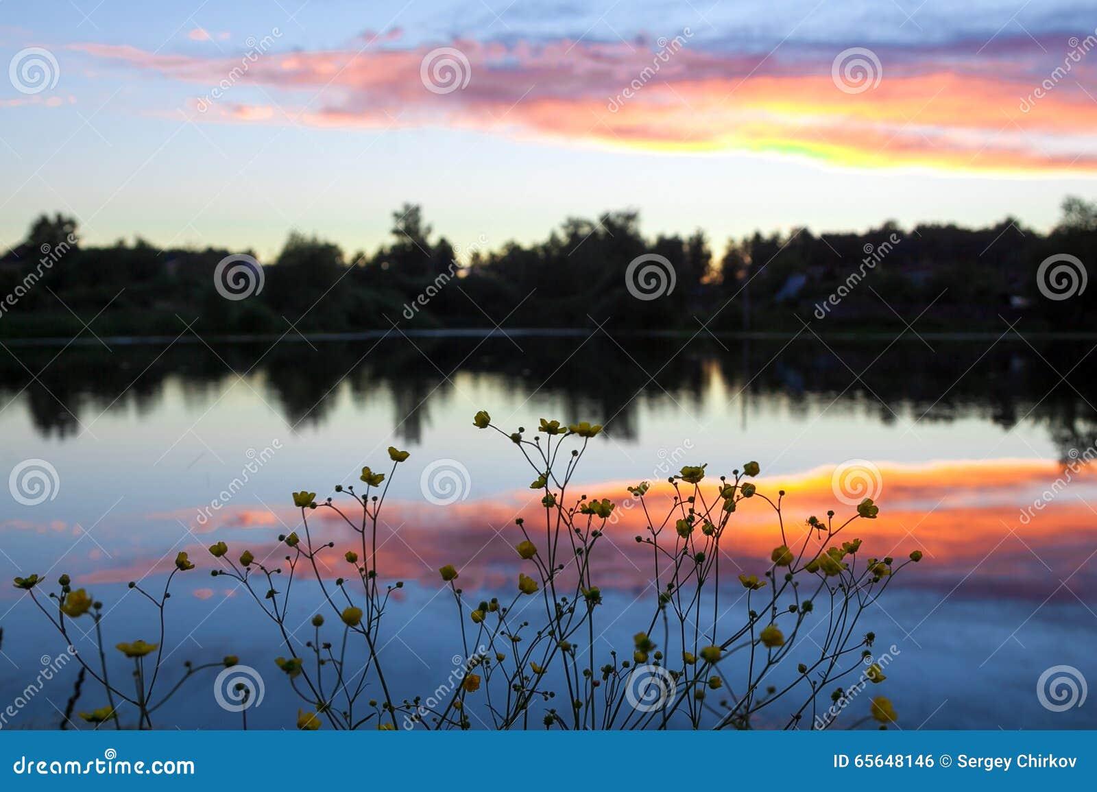 Baisse fine au sujet d un étang