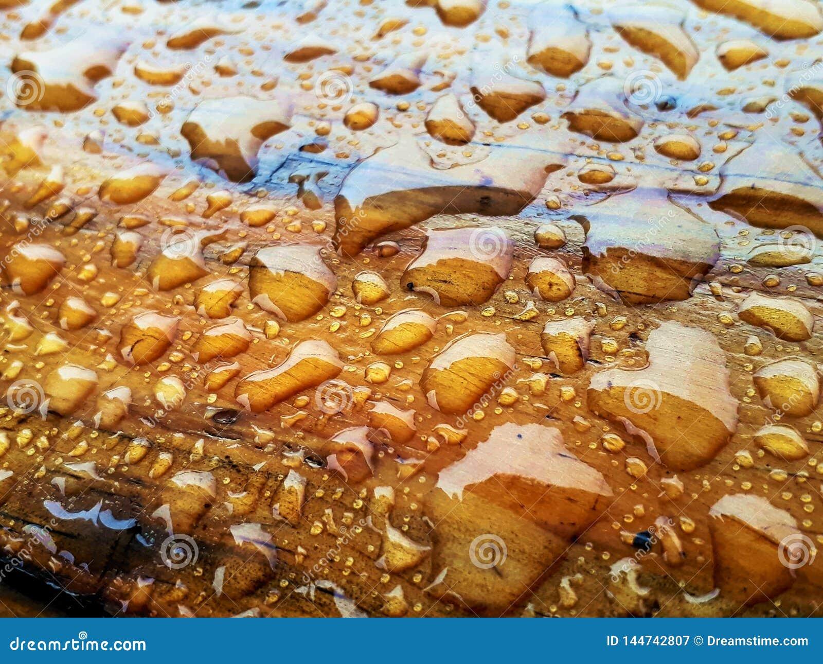 Baisses de l eau sur le bois