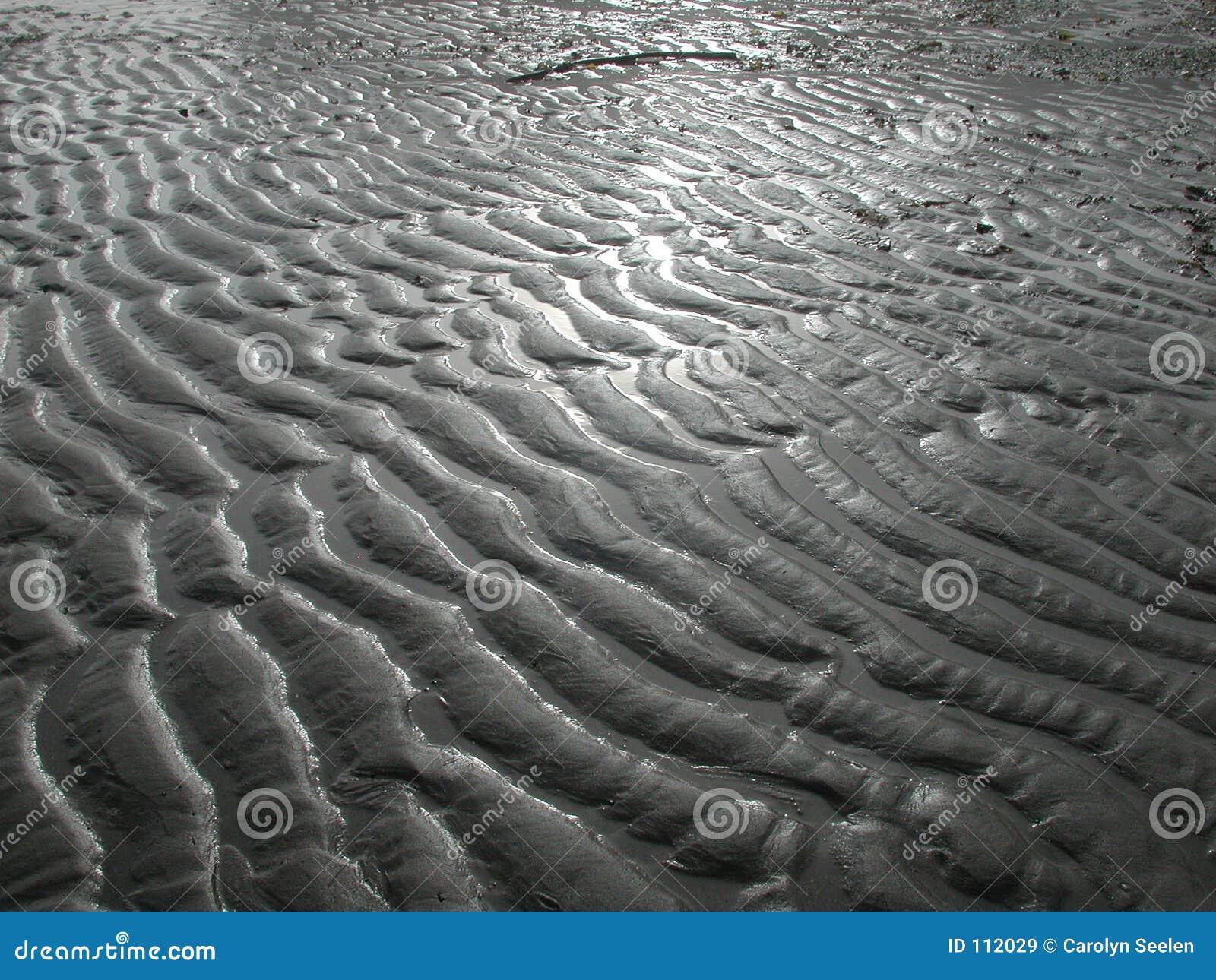 Baixa maré
