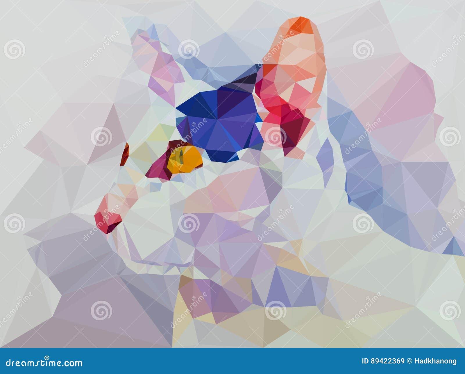Baixo geométrico poli do gato