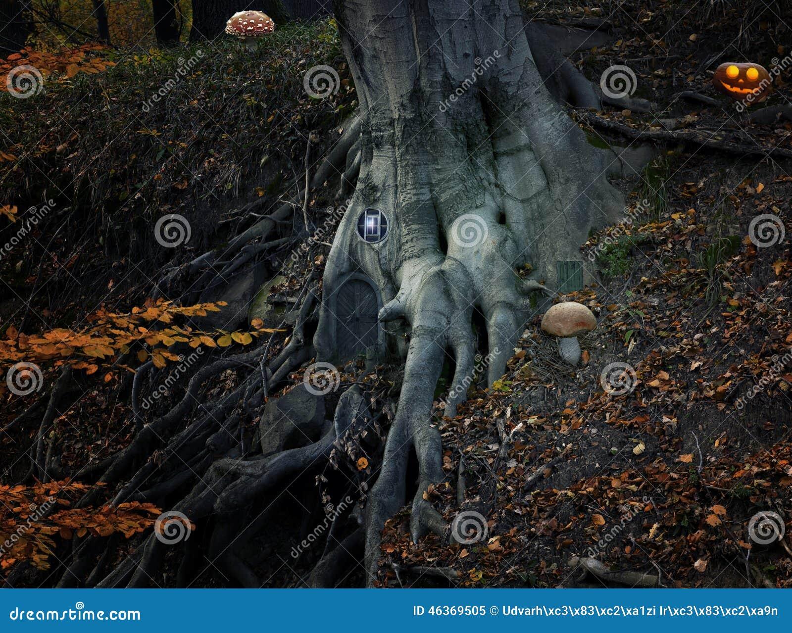 Bajka z elf banią w lesie i domem