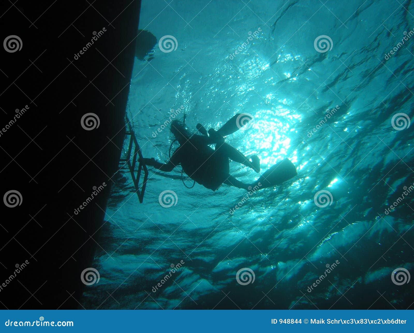 Bajo el barco