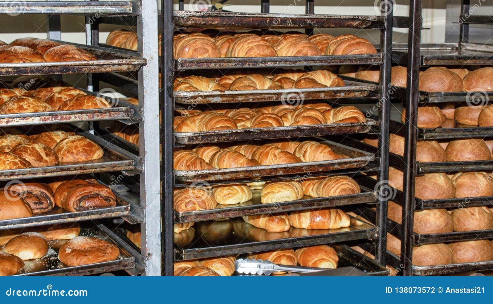 Bakade nytt bröd, hyllor med bullar ecuador quito