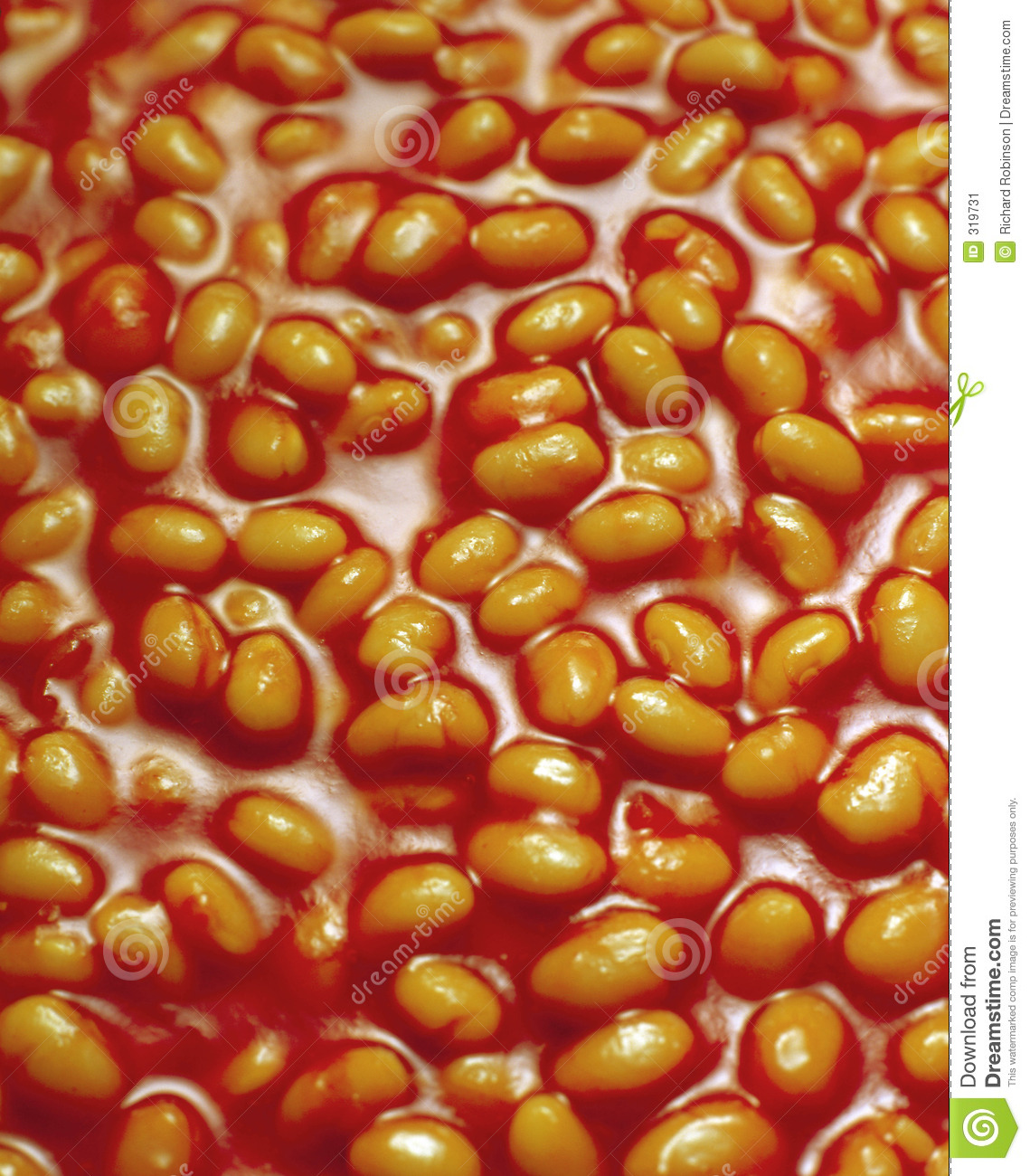 Baked Beans In Tomato Sauce Stock Image - Image: 319731