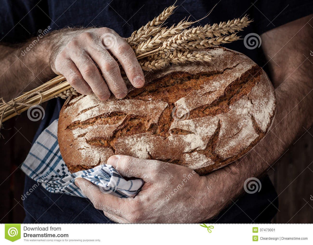 Baker man holding rustic loaf of bread and wheat in hands