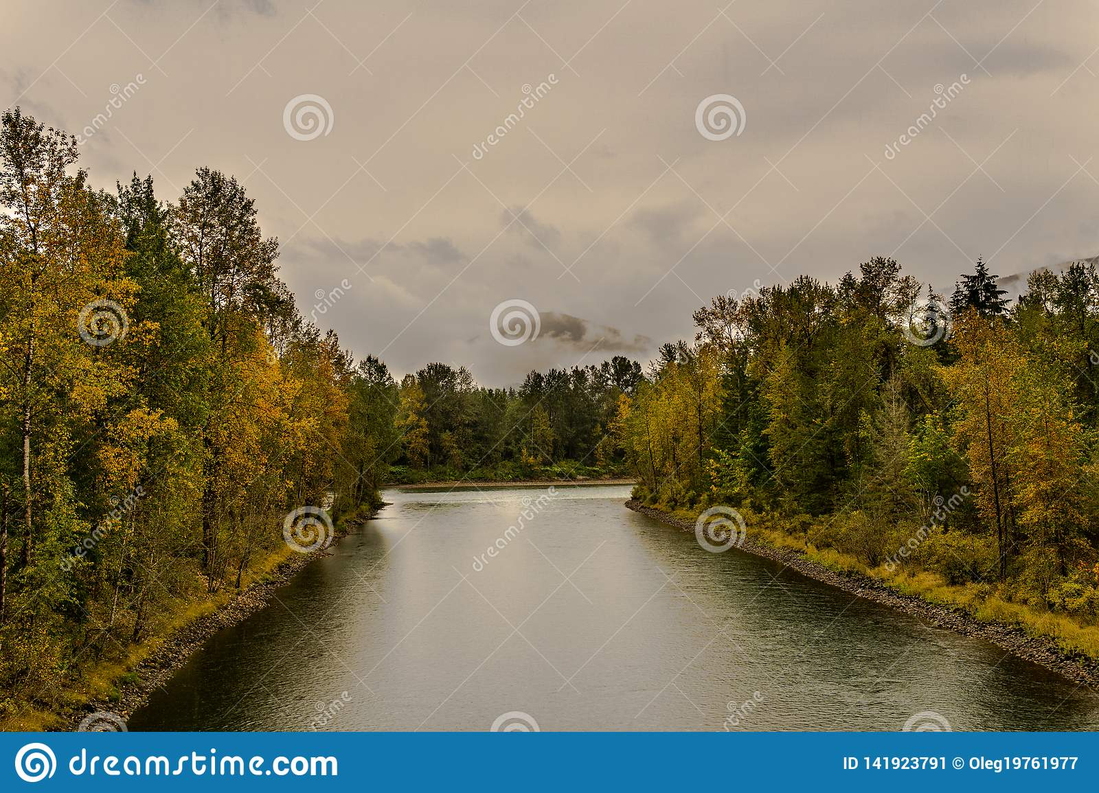 baker river in a forest at autumn rainy day cloudy sky near Concrete Washington USA