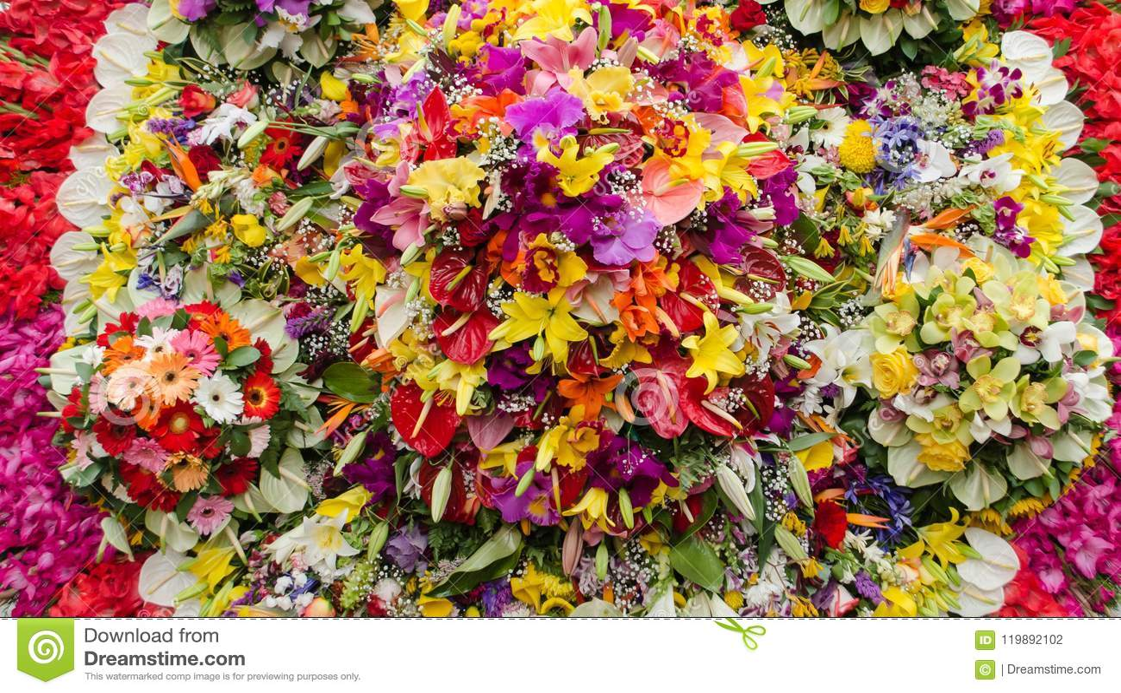Bakgrund av denfärgade gruppen av blommor
