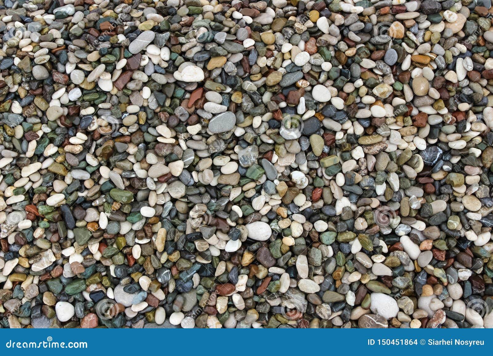 Bakgrund av små stenar Pebble Beach