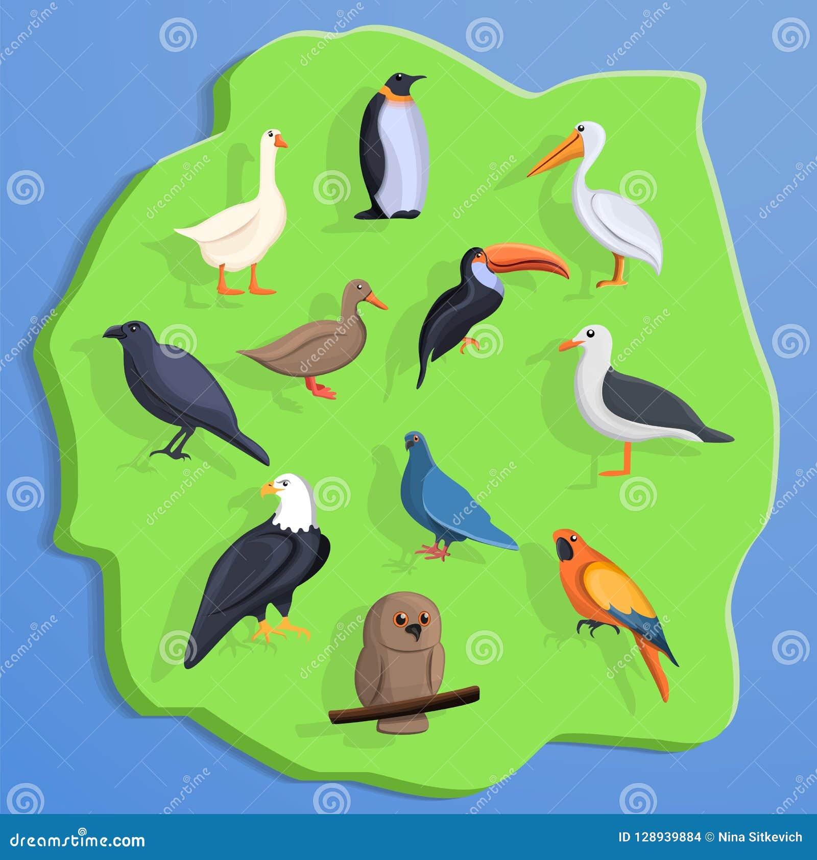 Bakgrund för fågellandbegrepp, tecknad filmstil