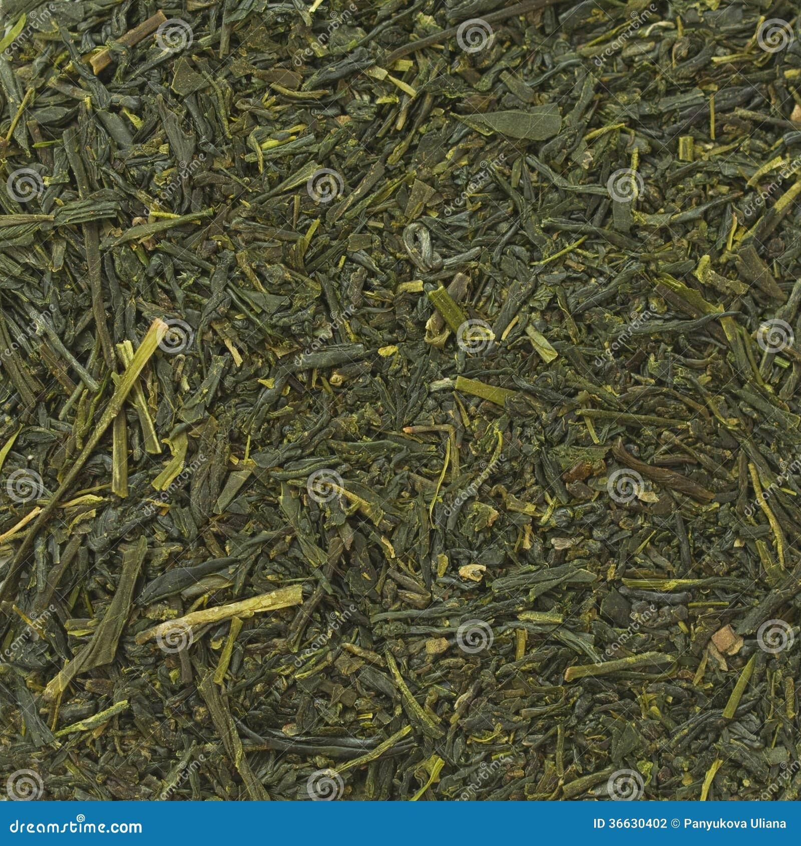Bakgrund för grönt te