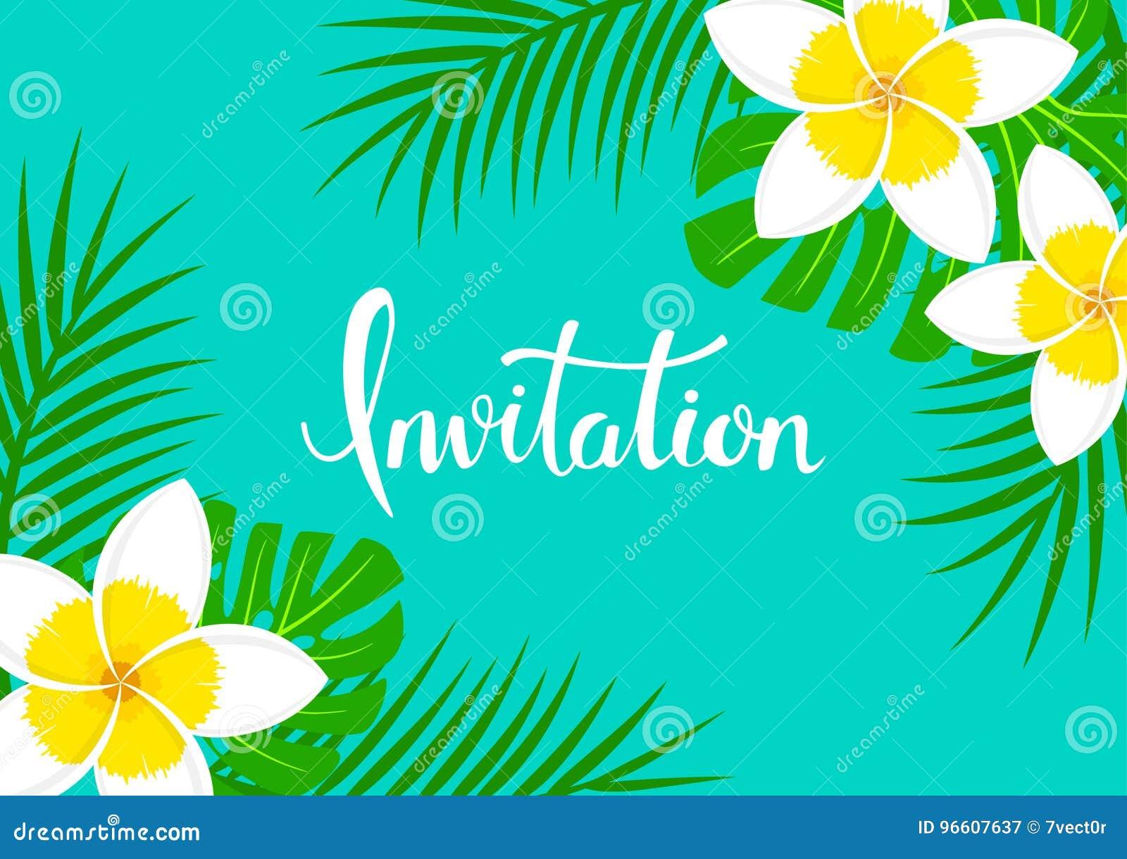 Bakgrund för hälsningkortet med tropisk exotisk frangipaniplumeria blommar,