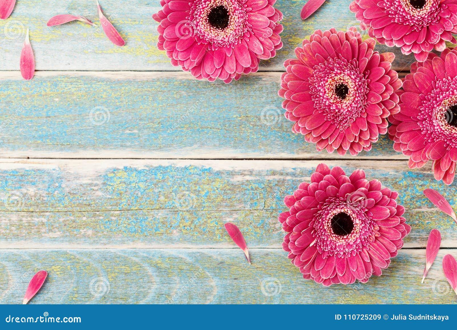 Bakgrund för kort för hälsning för Gerberatusenskönablomma för moder- eller kvinnas dag tappning för stil för illustrationlilja r