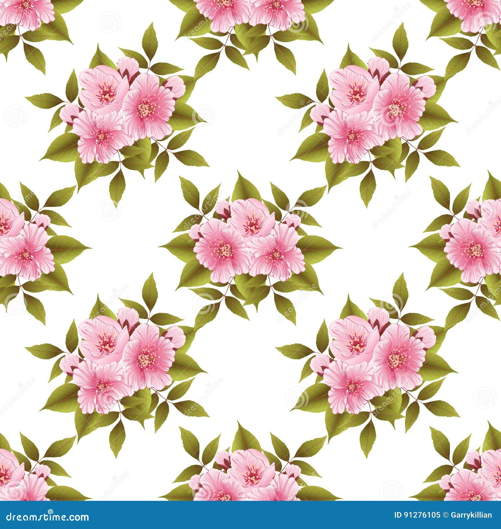 Bakgrund för modell för vektorsakura blomma sömlös Elegant textur för körsbärsröd blomning för bakgrunder