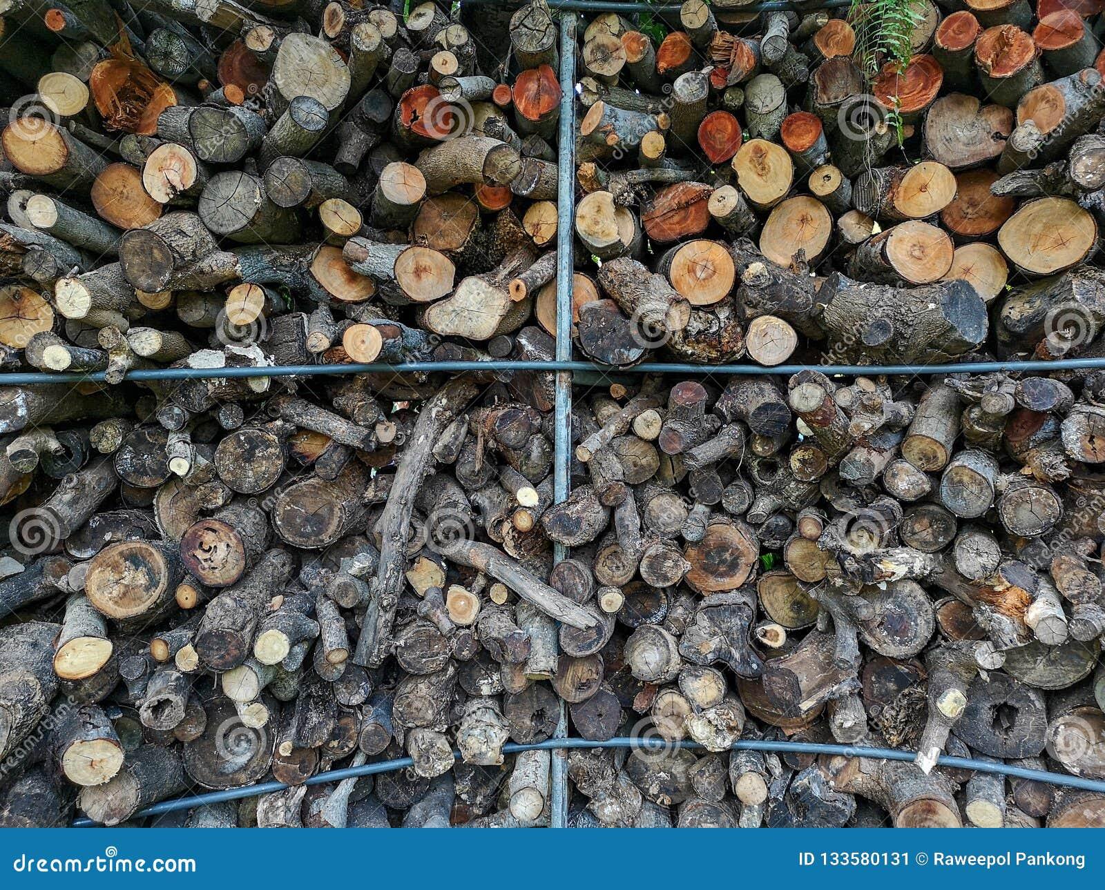 Bakgrund för samkopiering för trädfilial abstrakt