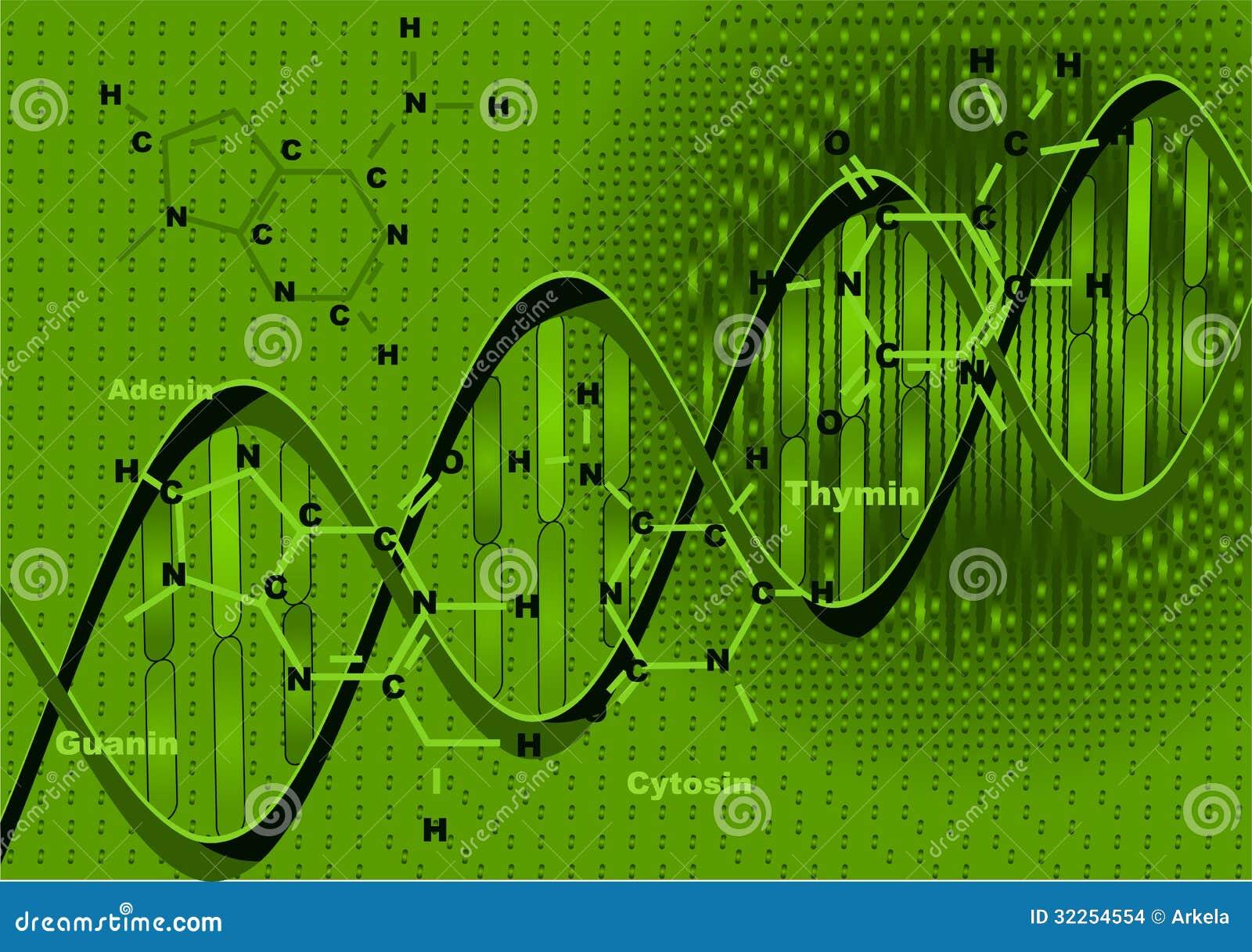 Bakgrund med DNA