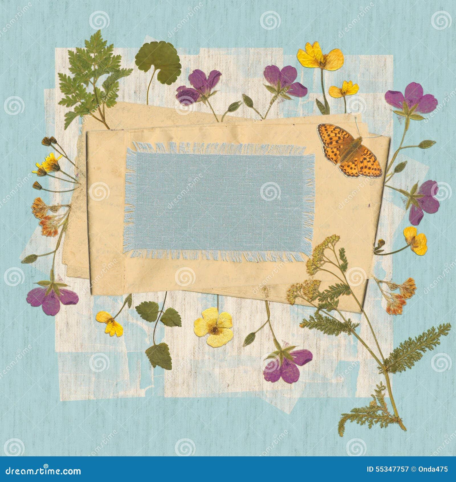 Bakgrund med torkade lösa blommor och gammalt papper Utrymme för text