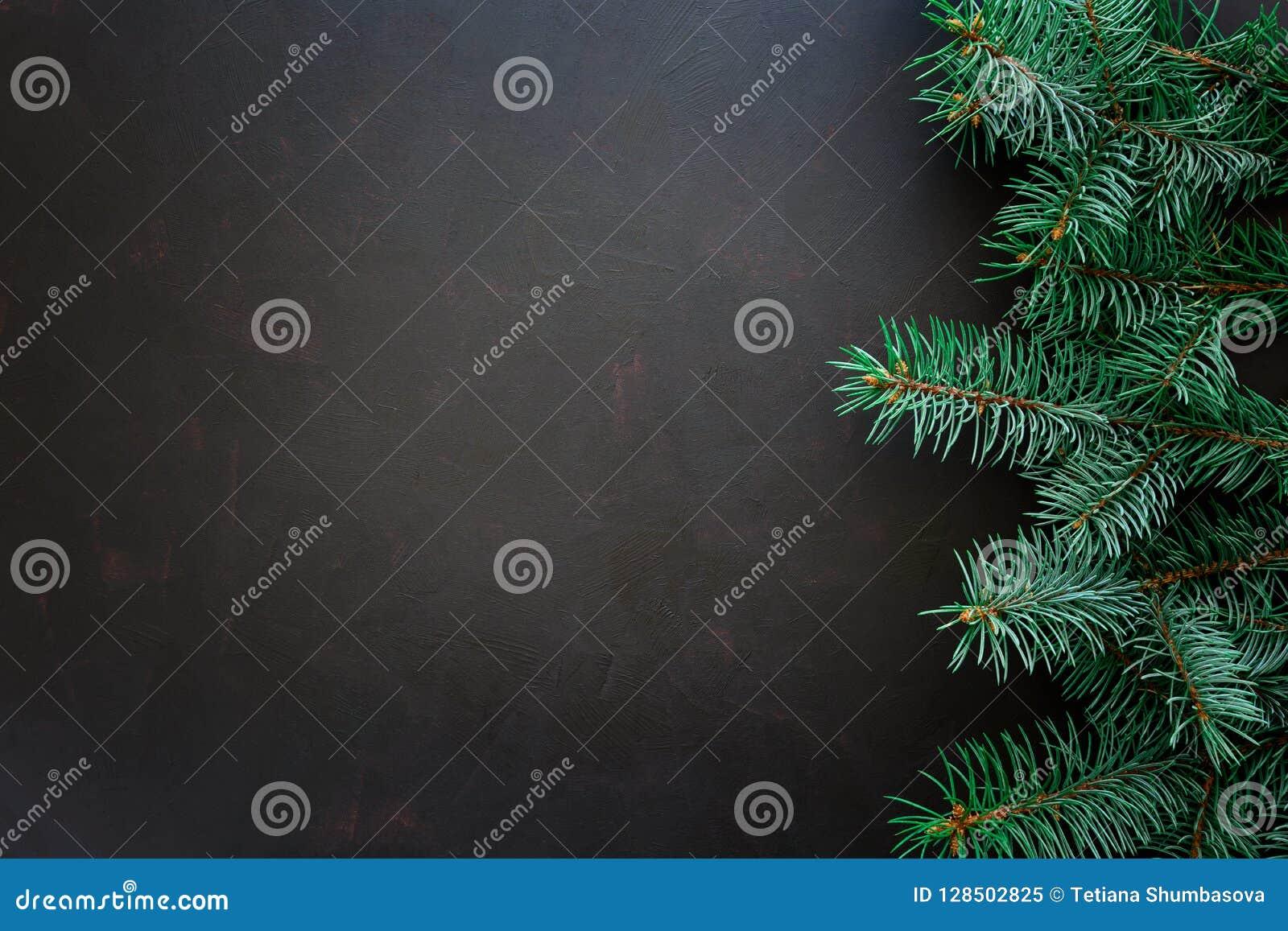Bakgrundskanten boxes vita guld- isolerade band för julgåvan Granträdfilialer på mörk träbakgrund
