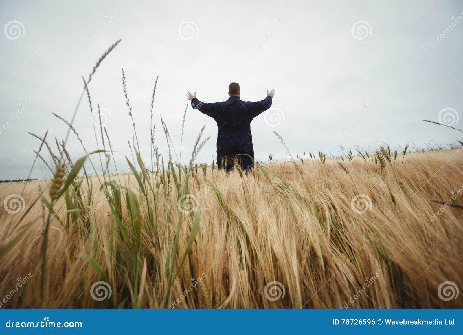 Bakre sikt av bondeanseendet i fältet
