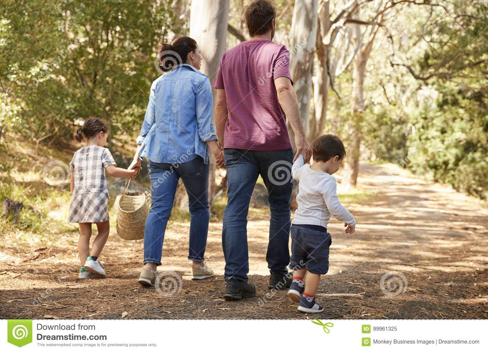 Bakre sikt av familjen som promenerar banan till och med Forest Together