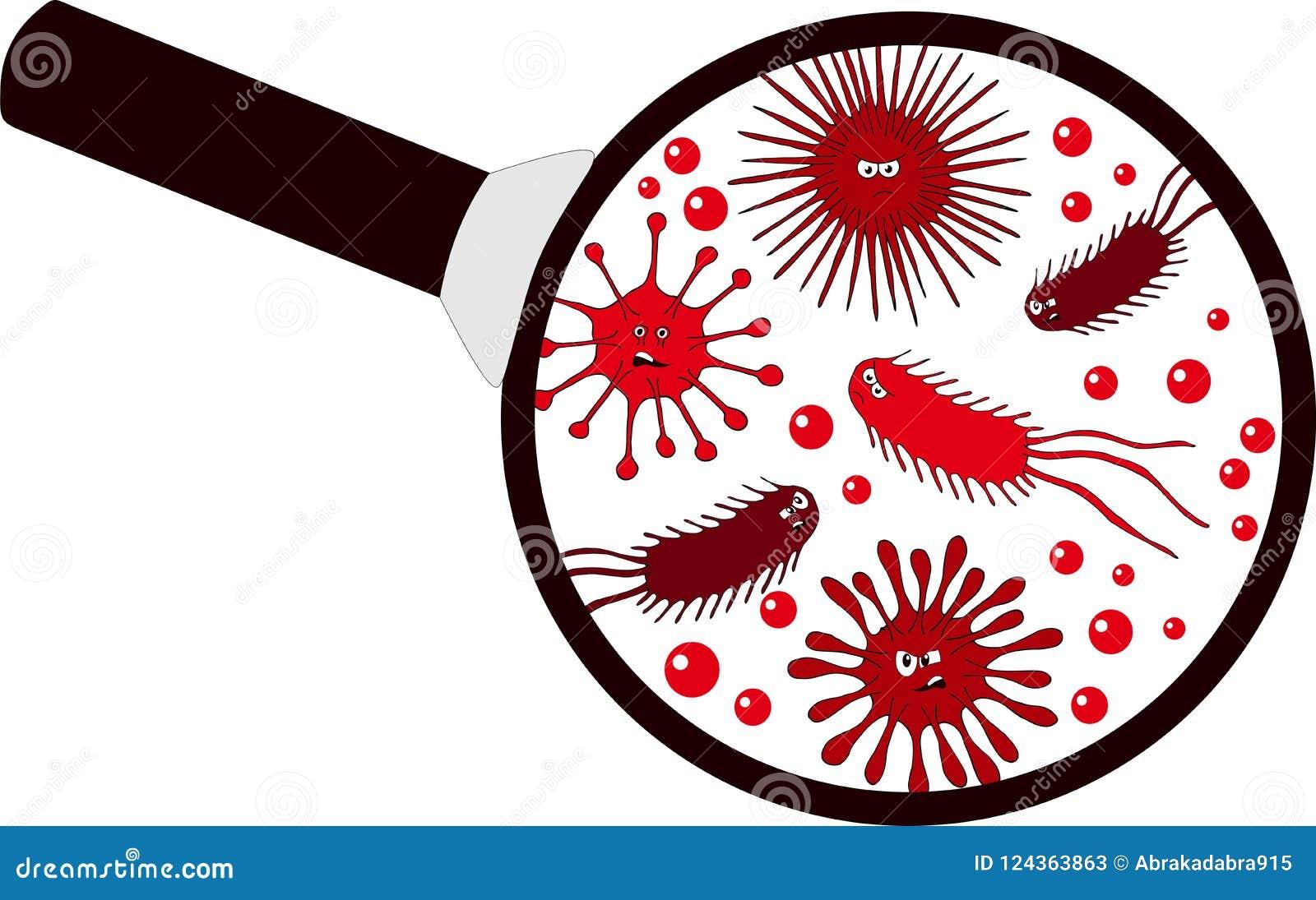 Bakterieller Mikroorganismus in einem Vergrößerungsglas Bakterien und Mikroben bunter Satz, Mikroorganismen, Bakterien, Viren, Pr