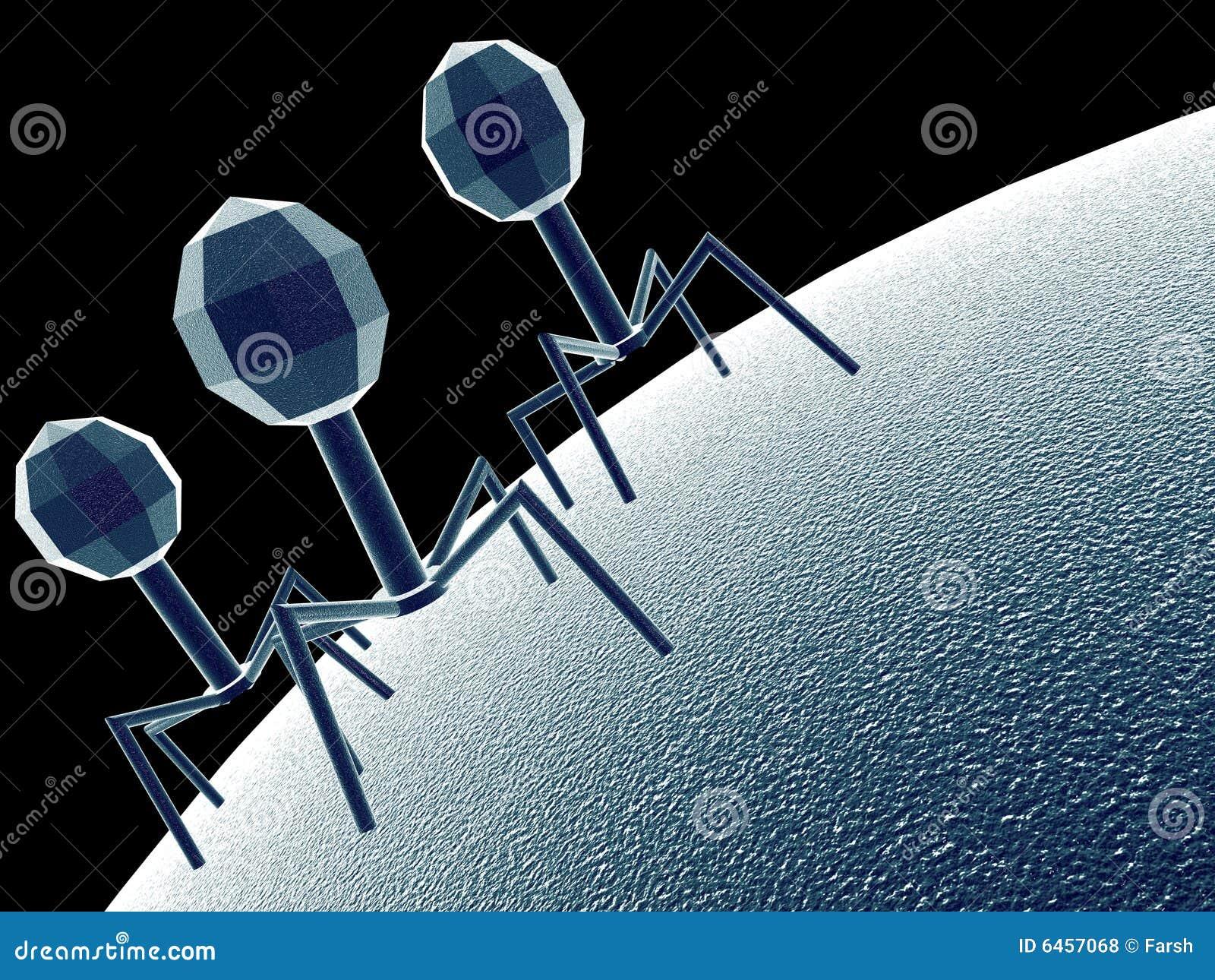 Bakteriofag