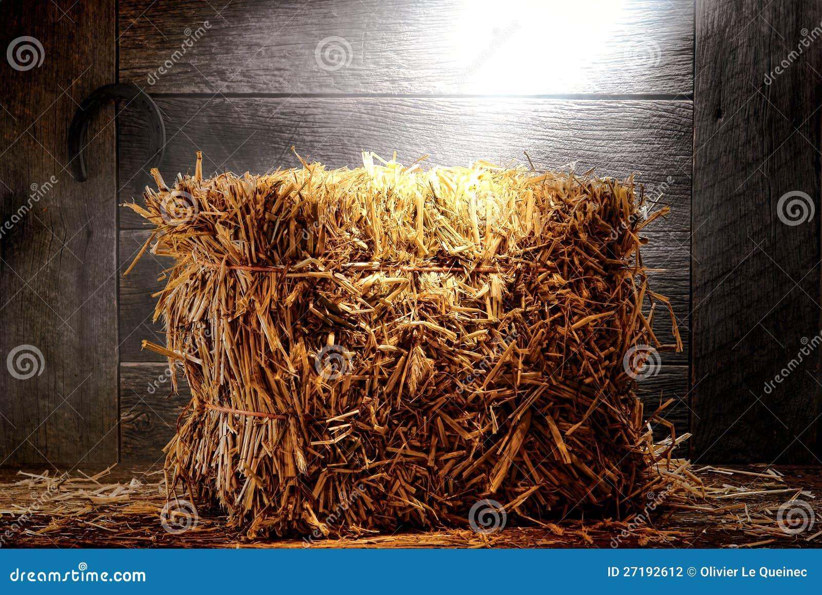 Bal av sugrörhö i gammal dammig lantgård- eller ranchladugård