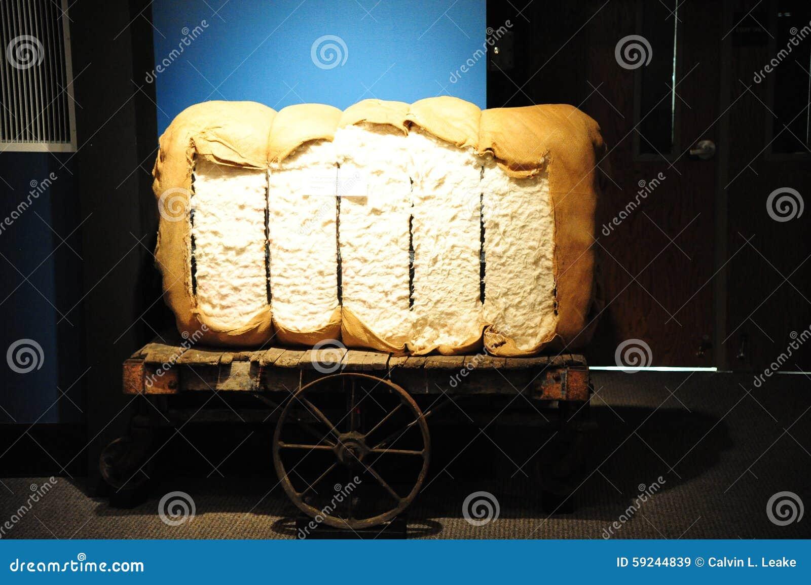 Download Bala De Algodón En Un Carro De Burro Imagen de archivo - Imagen de cápsulas, crecimiento: 59244839